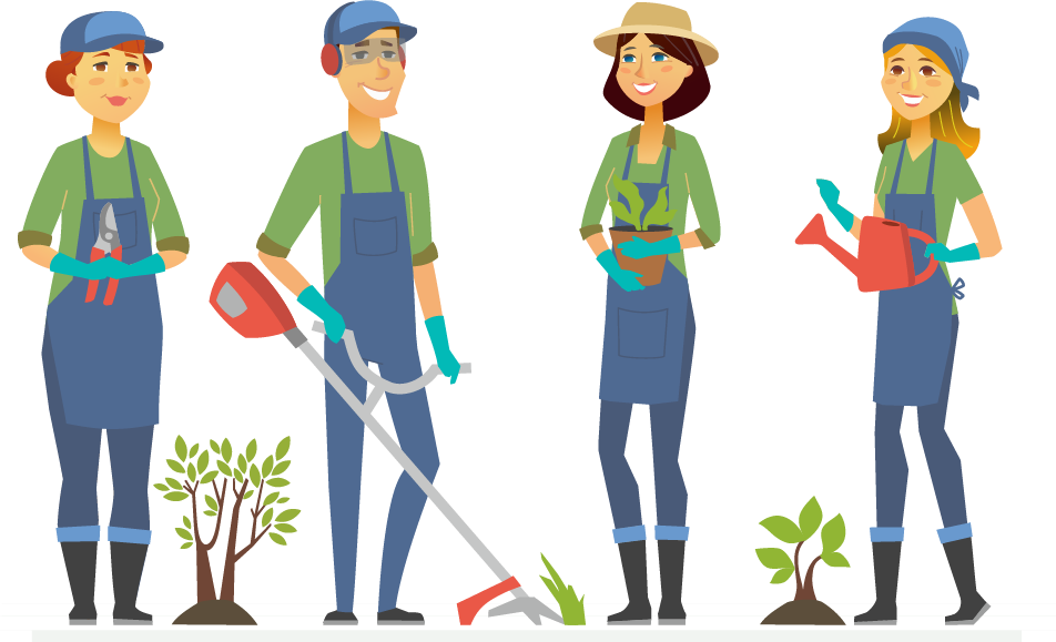 illustration- four people gardening